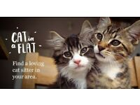 Fully insured cat sitter!!