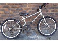 Unisex Childs Mountain Bike