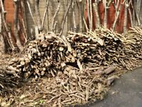Free cut logs/sticks.