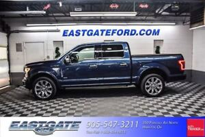 2015 Ford F-150 Platinum  22 wheels and more!