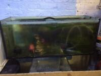 110 litre fish tank 3 foot