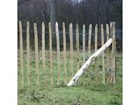Wanted Chestnutt fencing