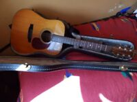 Fenix solid wood dreadnought acoustic with hard case