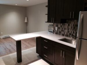 $1650 / 2br - 830ft2 - Newly Renovated 2 Bedroom Basement Suite