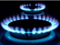 Gas boiler parts and flues