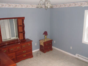 Clean, bright one bedroom apartment available in CBS