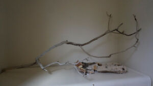 Home Wedding  Decor/Christmas Driftwood Bleached Branch