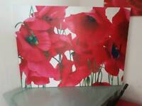 Large poppy canvas