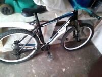 Custom Giant push bike