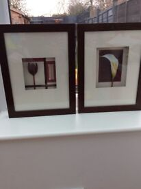 Pair of pretty framed flower pictures from Next