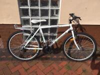 "WoodWorm bike 26"""