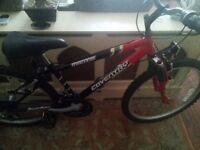 Boys Coventry Eagle Mantis 18 speed Mountain Bike