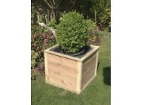 Large Square Box Planter