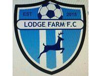 Lodge Farm Mini Kickers