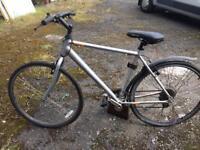 Large mountain bike