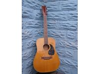 korean 12 string Tanglewood Boston acoustic guitar (AJ881/12N)