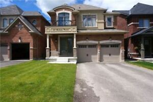 Pet Friendly Like New 4 Bedroom Detached Home in Newmarket