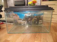 fish tank, approx 60 litre fish tank, aquarium