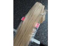 Ash blonde extensions Two