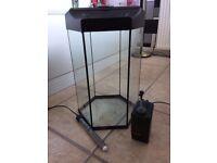 Hexagonal 30 litre fish tank