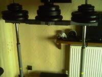 vertical leg press and cast iron weights