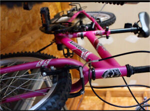"""Norco children's (girl) bicycle 20"""""""