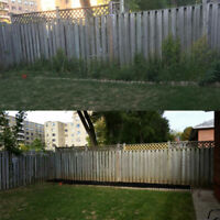 Weeding/garden bed maintenance/ lawn mowing/ hedge trimming