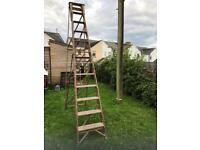 12 Tread wooden Lattice ladders