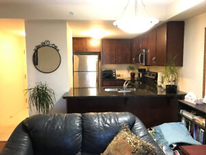 Upgraded Guelph (Clair and Victoria) 1 bedroom plus den condo