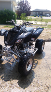 05 RAPTOR 660 TRADES WELCOME