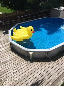 Inflatable pool duck