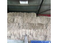 Hay bales - 20. Baled in June 2016. Ideal for horses and ponies. Very good quality.