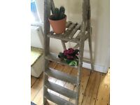 Wooden step ladder display only
