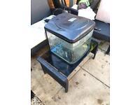 Fish tank 40 litres