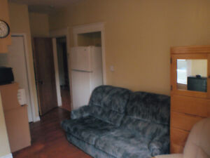 Downtown furnished bachelor everything included September 1