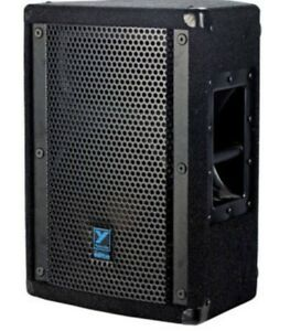 E10P Yorkville Elite 2 way Monitor/ Speaker