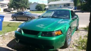 1999 SVT COBRA Convertible REDUCED FROM 12000