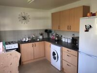 Bottom floor 2 story flat 2 bedroom lovely size looking to exchange