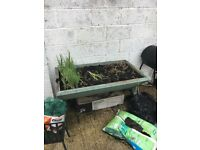 Assorted garden pots and large trough - FREE TO COLLECT