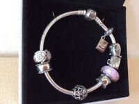 Brand new Pandora Bracelet - never worn