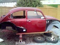 1971 bettle shell