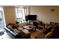 Double Room w/own bathroom and small garden. Acton