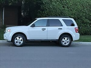 2011 Ford Escape SUV, Crossover