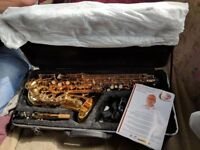 Odssesy Alto saxophone AS NEW