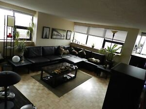 LARGE & BRIGHT 2 BEDROOM IN HEART OF DOWNTOWN