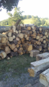 REDUCED: SURPLUS OF  FIREWOOD