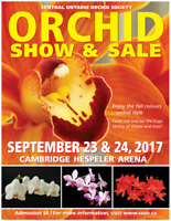 32nd Annual Orchid Show & Sale