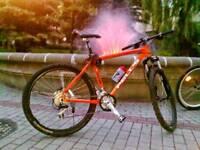 Mountain Bike has been stolen