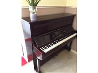 Amyl - Wooden Piano