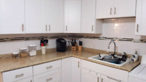 Renovated  lower 2 bedroom apartment  . 64 Alexander Avenue
